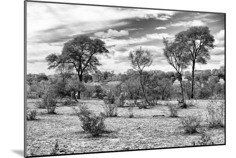 Awesome South Africa Collection B&W - African Landscape IV-Philippe Hugonnard-Mounted Photographic Print