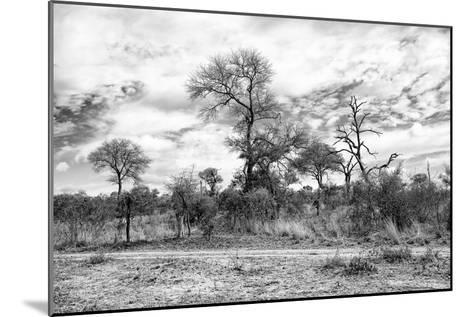 Awesome South Africa Collection B&W - African Landscape II-Philippe Hugonnard-Mounted Photographic Print