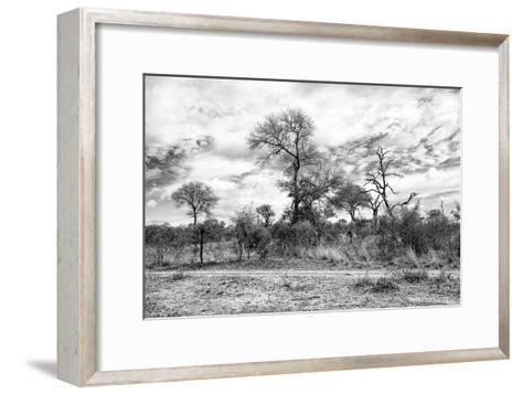 Awesome South Africa Collection B&W - African Landscape II-Philippe Hugonnard-Framed Art Print