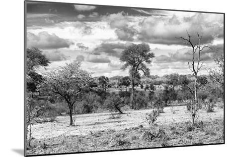 Awesome South Africa Collection B&W - African Landscape VII-Philippe Hugonnard-Mounted Photographic Print