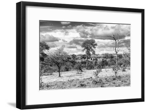 Awesome South Africa Collection B&W - African Landscape VII-Philippe Hugonnard-Framed Art Print