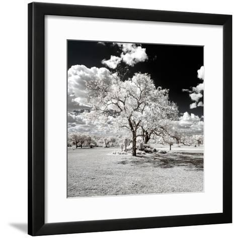 Awesome South Africa Collection Square - Another Look Savannah-Philippe Hugonnard-Framed Art Print