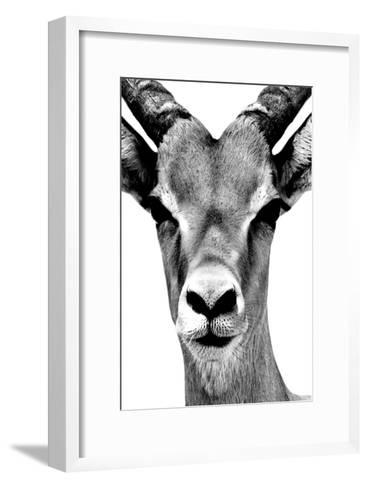 Safari Profile Collection - Portrait of Antelope White Edition-Philippe Hugonnard-Framed Art Print
