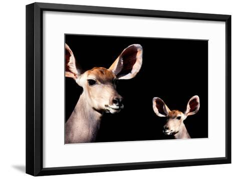 Safari Profile Collection - Antelope and Baby Black Edition-Philippe Hugonnard-Framed Art Print