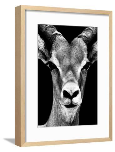 Safari Profile Collection - Portrait of Antelope Black Edition-Philippe Hugonnard-Framed Art Print