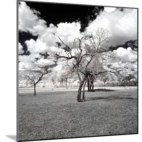 Awesome South Africa Collection Square - Another Look Savannah-Philippe Hugonnard-Mounted Photographic Print