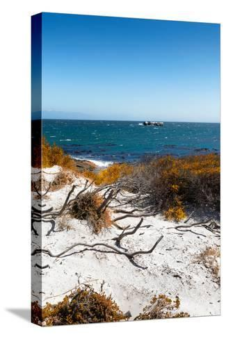 Awesome South Africa Collection - Wild Beach in Boulders Beach III-Philippe Hugonnard-Stretched Canvas Print