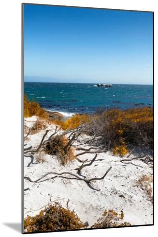 Awesome South Africa Collection - Wild Beach in Boulders Beach III-Philippe Hugonnard-Mounted Photographic Print