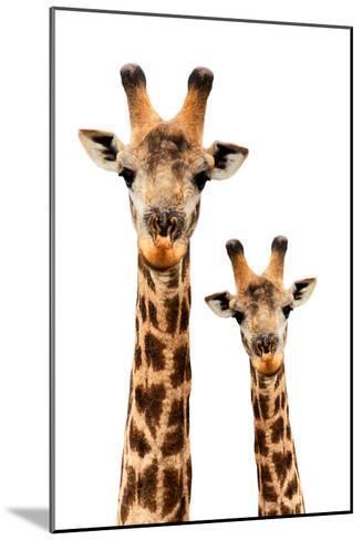 Safari Profile Collection - Portrait of Giraffe and Baby White Edition III-Philippe Hugonnard-Mounted Photographic Print