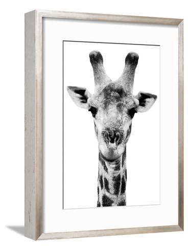 Safari Profile Collection - Portrait of Giraffe White Edition V-Philippe Hugonnard-Framed Art Print