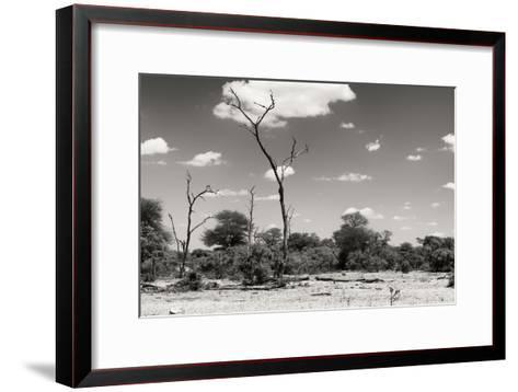 Awesome South Africa Collection B&W - African Savannah Landscape II-Philippe Hugonnard-Framed Art Print