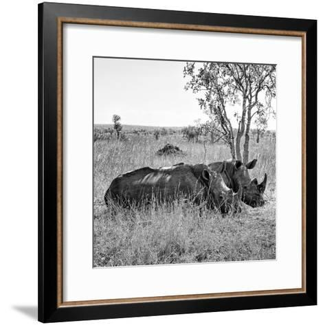 Awesome South Africa Collection Square - Two Rhinoceros sleeping B&W-Philippe Hugonnard-Framed Art Print