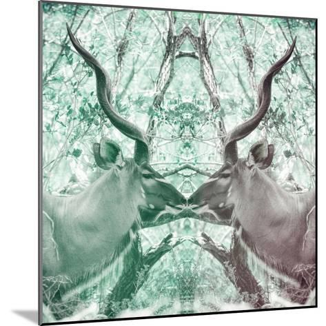 Awesome South Africa Collection Square - Reflection of Greater Kudu - Coral Green & Dimgray-Philippe Hugonnard-Mounted Photographic Print