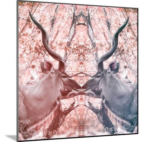 Awesome South Africa Collection Square - Reflection of Greater Kudu - Red & Dimgray-Philippe Hugonnard-Mounted Photographic Print