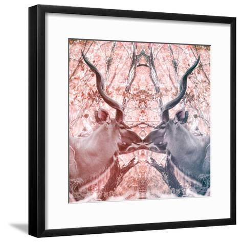 Awesome South Africa Collection Square - Reflection of Greater Kudu - Red & Dimgray-Philippe Hugonnard-Framed Art Print
