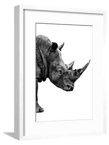 Safari Profile Collection - Rhino White Edition IV-Philippe Hugonnard-Framed Art Print