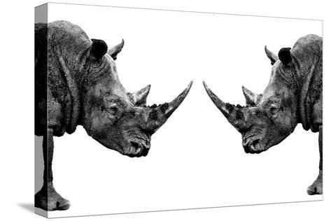 Safari Profile Collection - Rhinos Face to Face White Edition-Philippe Hugonnard-Stretched Canvas Print
