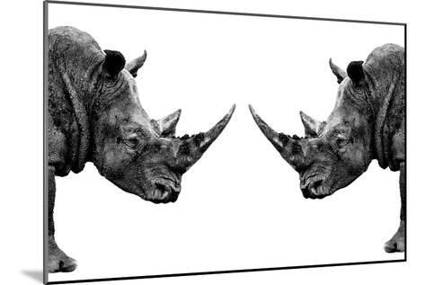 Safari Profile Collection - Rhinos Face to Face White Edition-Philippe Hugonnard-Mounted Photographic Print