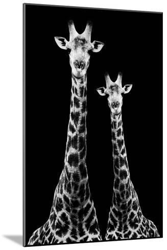 Safari Profile Collection - Two Giraffes Black Edition II-Philippe Hugonnard-Mounted Photographic Print