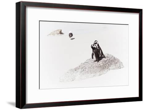 Awesome South Africa Collection - Penguin Lovers II-Philippe Hugonnard-Framed Art Print