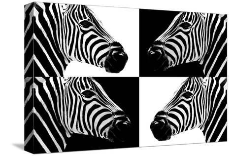 Safari Profile Collection - Zebras III-Philippe Hugonnard-Stretched Canvas Print