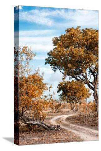 Awesome South Africa Collection - Savanna Landscape III-Philippe Hugonnard-Stretched Canvas Print