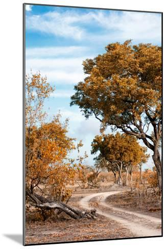 Awesome South Africa Collection - Savanna Landscape III-Philippe Hugonnard-Mounted Photographic Print