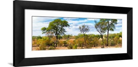 Awesome South Africa Collection Panoramic - Beautiful Savannah Landscape-Philippe Hugonnard-Framed Art Print