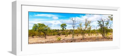 Awesome South Africa Collection Panoramic - Beautiful Savannah Landscape III-Philippe Hugonnard-Framed Art Print