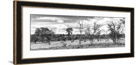 Awesome South Africa Collection Panoramic - Beautiful Savannah Landscape II B&W-Philippe Hugonnard-Framed Art Print