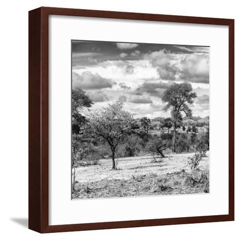 Awesome South Africa Collection Square - Savanna Landscape IV B&W-Philippe Hugonnard-Framed Art Print