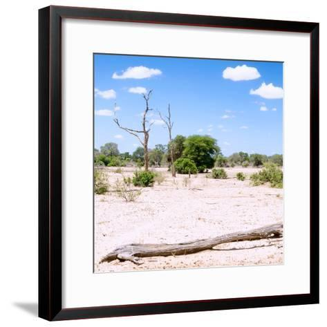 Awesome South Africa Collection Square - Savannah Landscape III-Philippe Hugonnard-Framed Art Print
