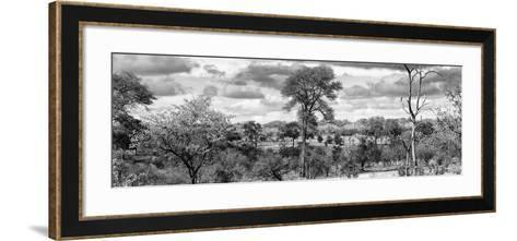 Awesome South Africa Collection Panoramic - Beautiful Savannah Landscape III B&W-Philippe Hugonnard-Framed Art Print