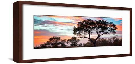 Awesome South Africa Collection Panoramic - Tree Silhouetted at Sunset-Philippe Hugonnard-Framed Art Print