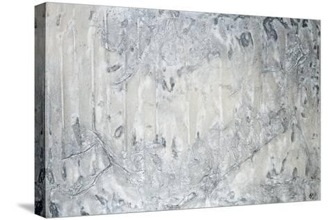 Winter is Coming-Estes Estes-Stretched Canvas Print
