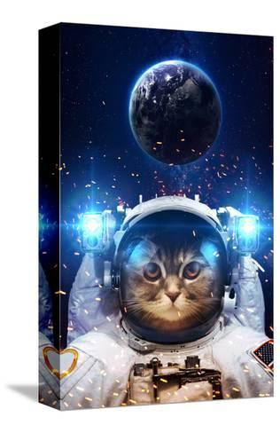 Beautiful Cat in Outer Space. Elements of this Image Furnished-Vadimsadovski-Stretched Canvas Print