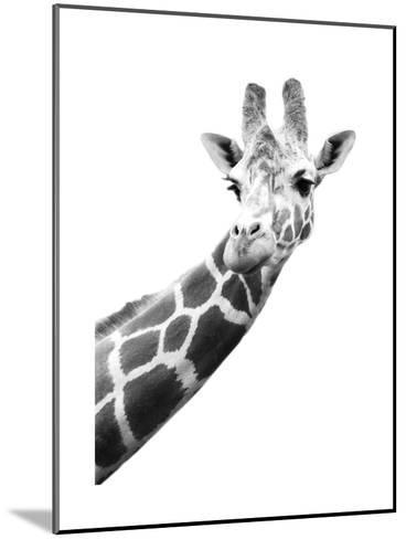 Giraffe--Mounted Art Print