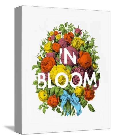 In Bloom-Chris Wharton-Stretched Canvas Print