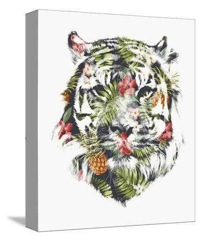 Tropical Tiger-Robert Farkas-Stretched Canvas Print
