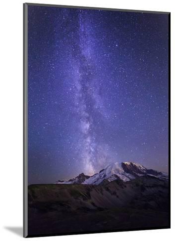 Washington, Mt. Rainier National Park-Gary Luhm-Mounted Art Print
