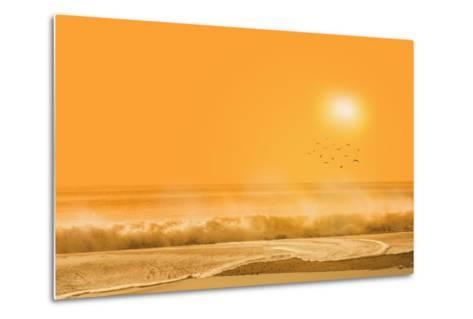 Birds Flying over Sea-Marco Carmassi-Metal Print