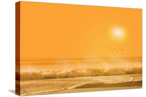 Birds Flying over Sea-Marco Carmassi-Stretched Canvas Print