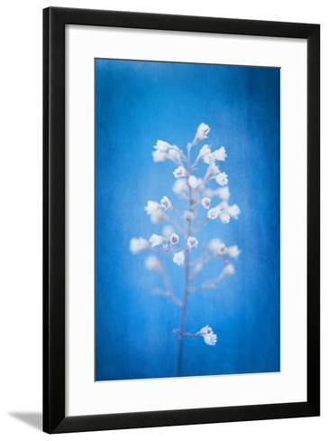 Blue Pause-Philippe Sainte-Laudy-Framed Art Print
