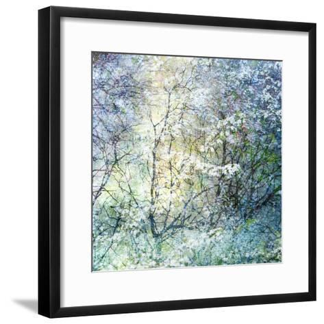 Floral Froth II-Doug Chinnery-Framed Art Print