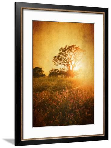 Golden Age-Philippe Sainte-Laudy-Framed Art Print
