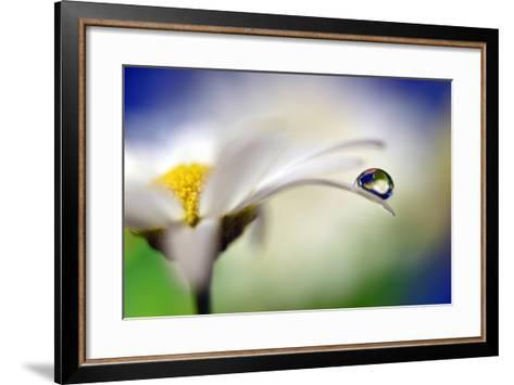 Intens Summer Drop II-Heidi Westum-Framed Art Print