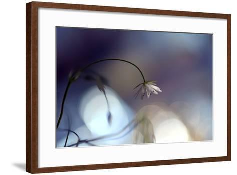 Good Night-Heidi Westum-Framed Art Print