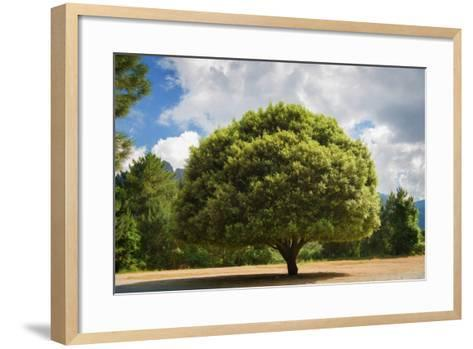 Right Place-Philippe Sainte-Laudy-Framed Art Print
