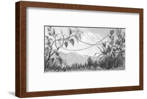 Stylized Beaded Ribbon Connecting Leafy Stems--Framed Art Print