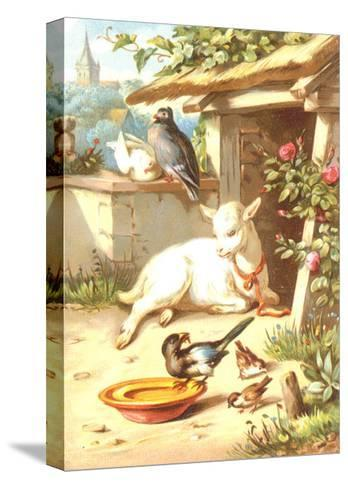 Relaxing Baby Goat with Birds Illustration--Stretched Canvas Print